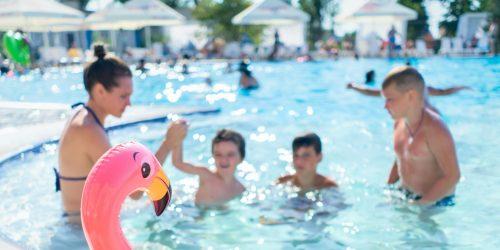 pink-flamingo-floater-2705879